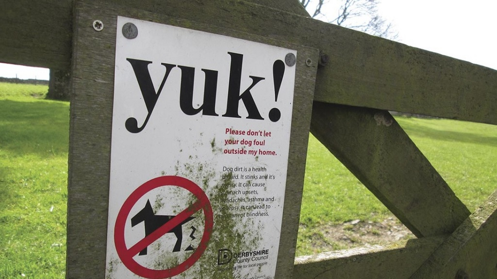 Neosporosis in cattle: farmer issues emotional plea to dog walkers after cull scare