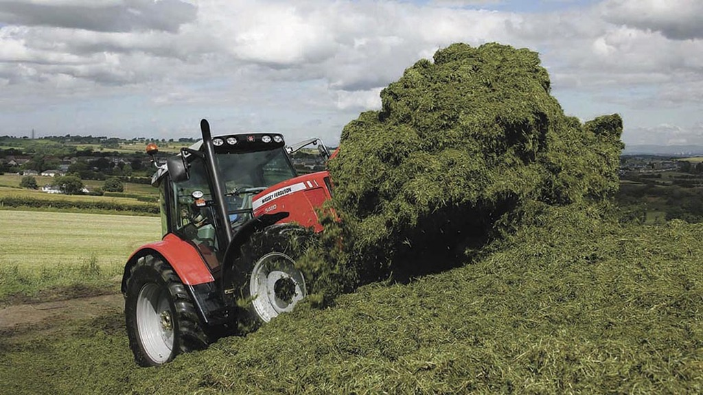 Right conditions key for multi-cut grass