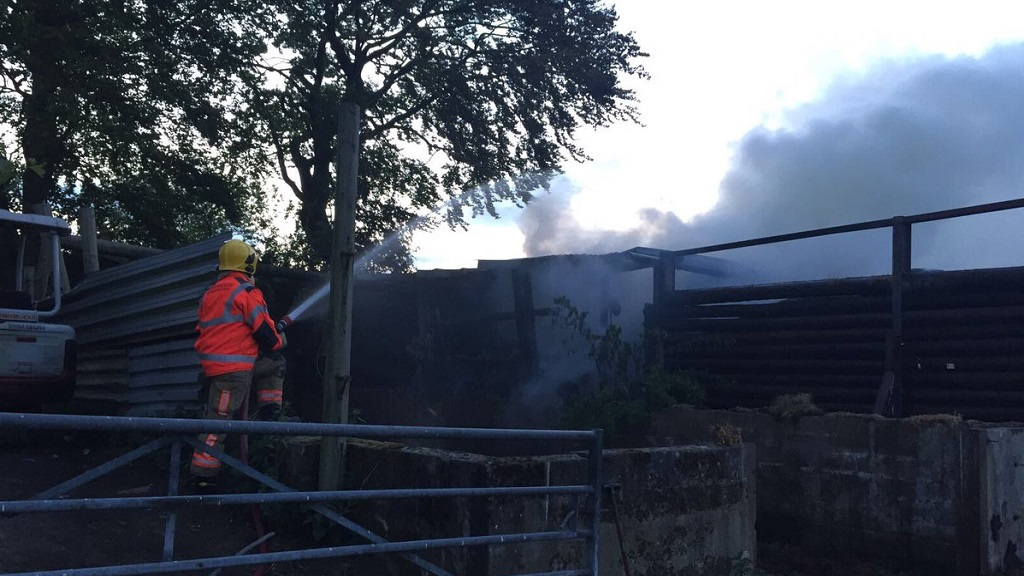'They put their lives in danger' - heroes rescue livestock from farm as 30 firefighters battle barn blaze