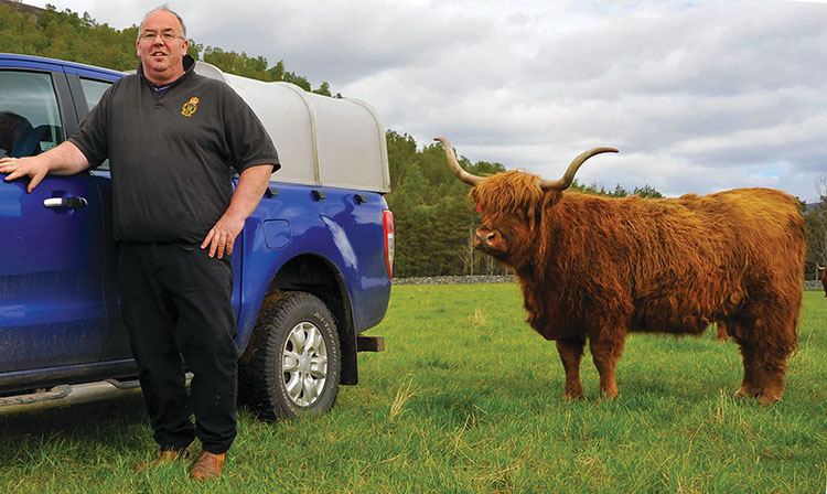 Scottish native breeds at heart of Balmoral estate