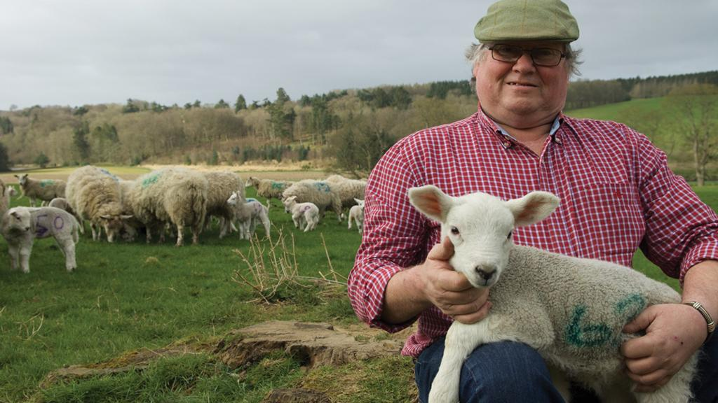 Charles Bruce: 'One of the routine tasks I am not looking forward to is clipping the ewes'