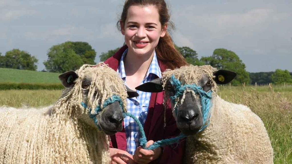 15-year-old Wensleydale sheep breeder makes a name for herself on the show circuit