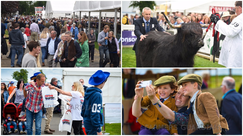 PICTURE GALLERY: 75+ photos from Royal Highland Show 2017