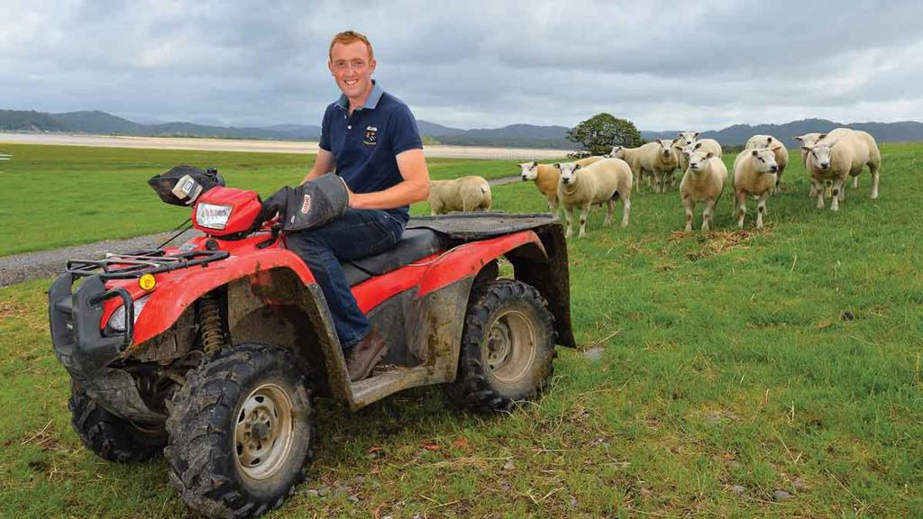 In Your Field: Will Case - 'Greetings from the Costa del Cumbria where first cut is finished'