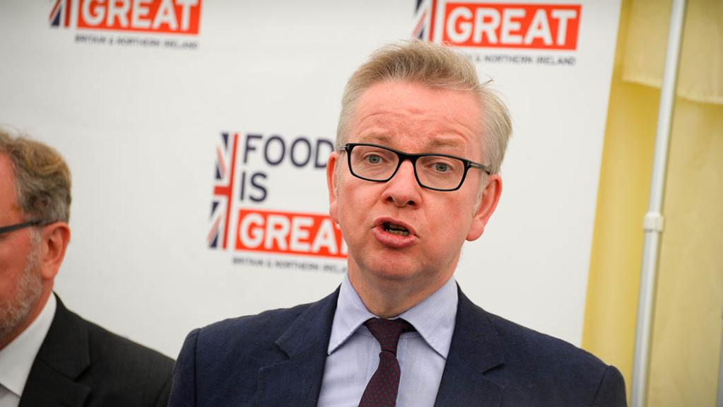 Michael Gove accused of 'neglecting food production' in green Brexit speech