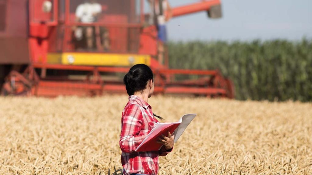 Women in Food and Agriculture: Your chance to have a say in our survey