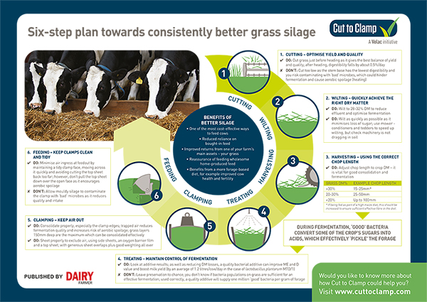 The six-step plan towards better grass silage