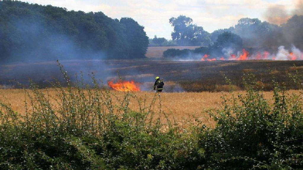 Tractor and 30 acres of crops destroyed after arson attack on farm