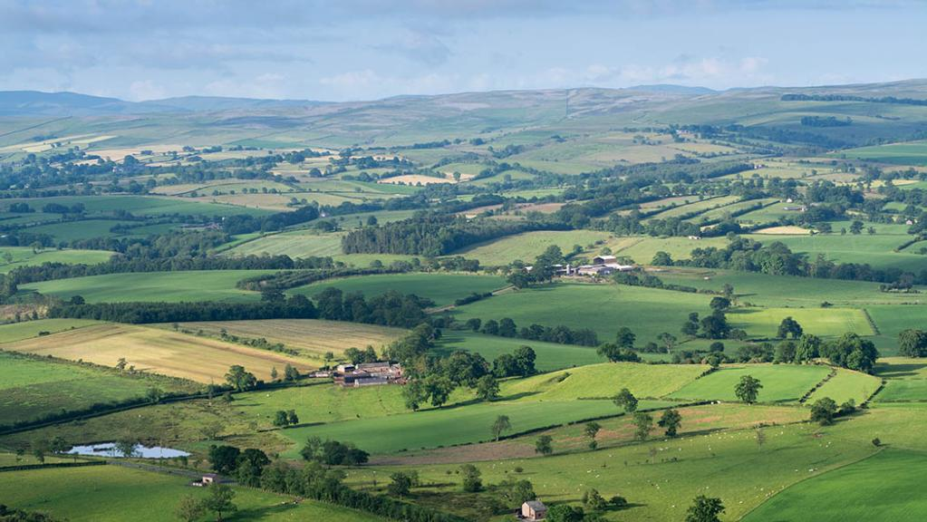 Supply shortages keep Scottish farmland market firm