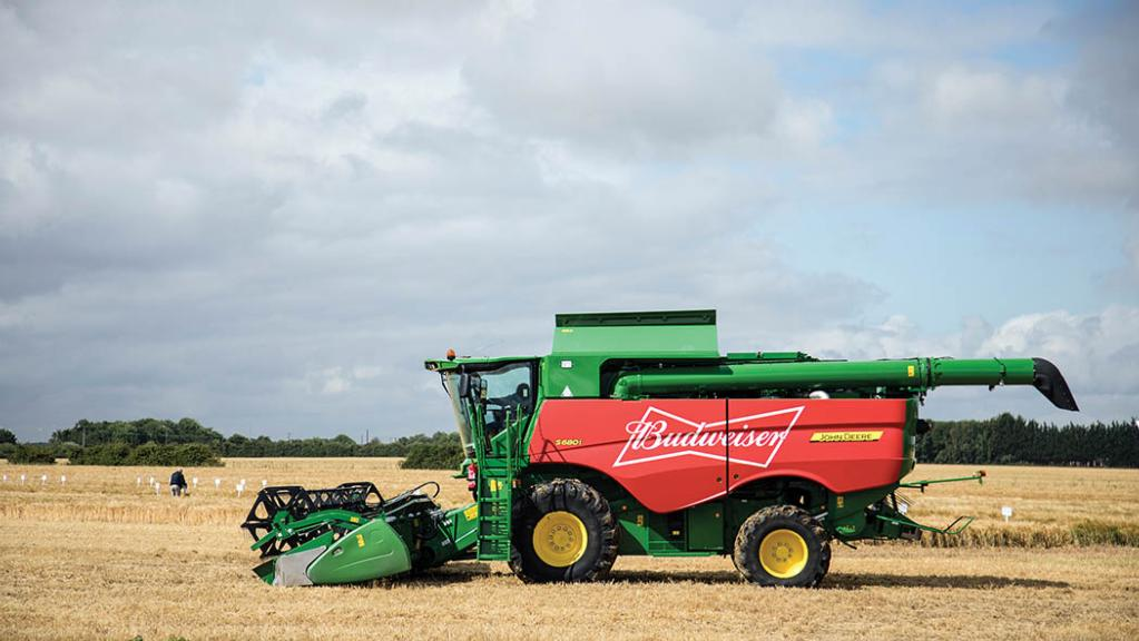 Budweiser hits target for 100% British barley sourcing