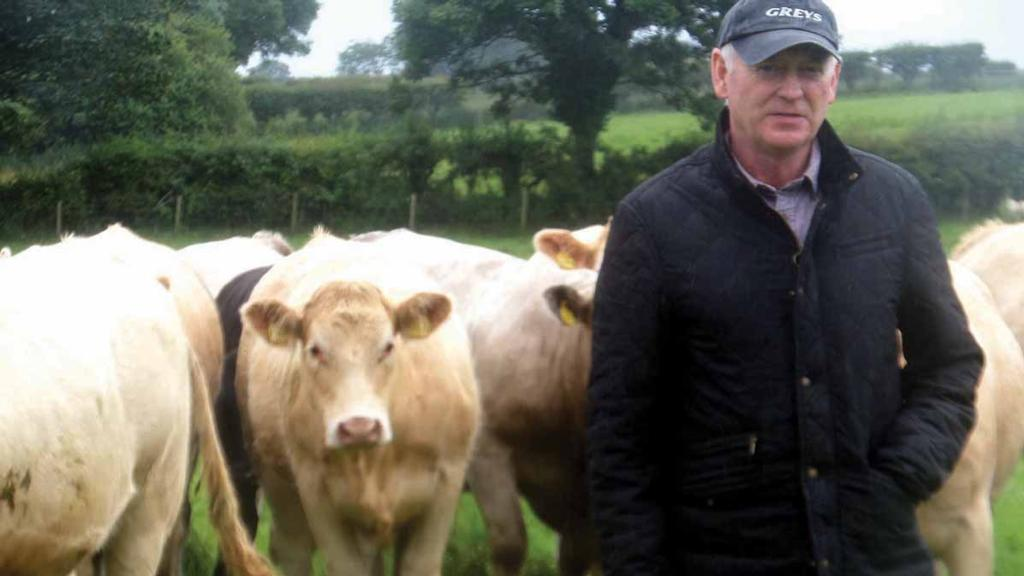 Farm assurance celebrate 25 years in Northern Ireland