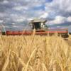 Barley harvest progressing in Wiltshire by Martin Smart
