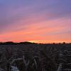 Harvest sunset by Jake Freestone, Gloucestershire
