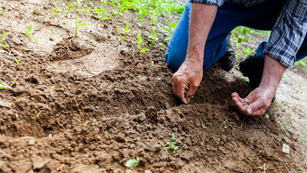 Investing in personal growth within farming