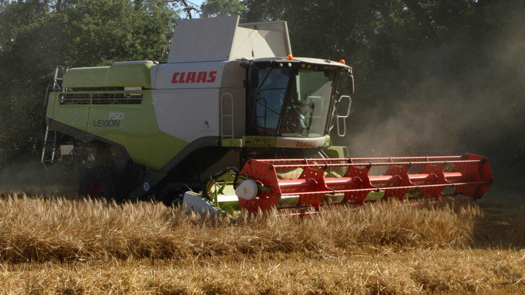 Andrew Graham cutting barley at Wylam