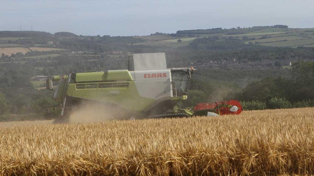 Andrew Graham cutting barley at Wylam, Northumberland