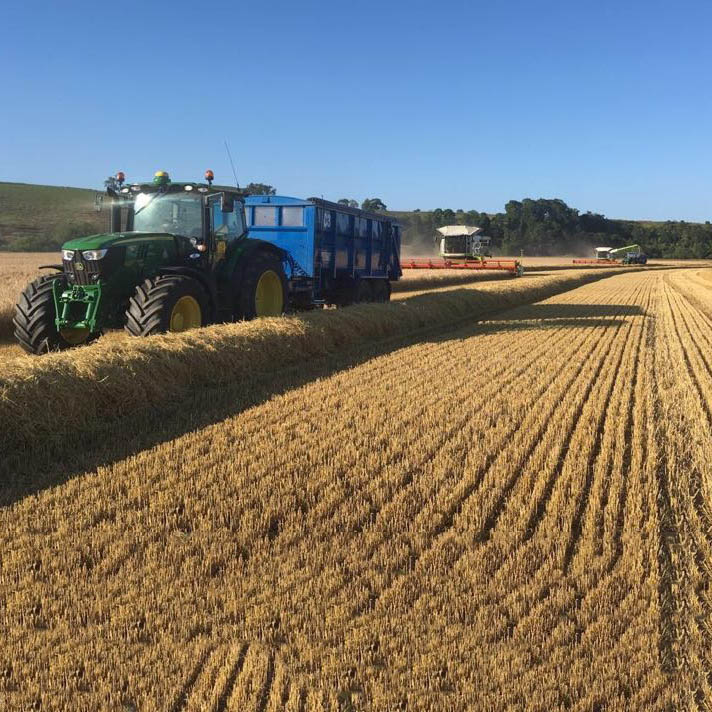 Barley harvest at McGregor Farms, Coldstream