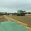 Three combines on the go at McGregor Farms, Coldstream