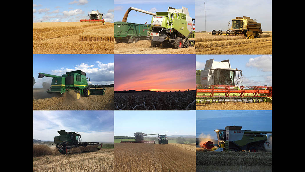PICTURE GALLERY: Harvest 2017 - How's your #FGHarvest17 going?