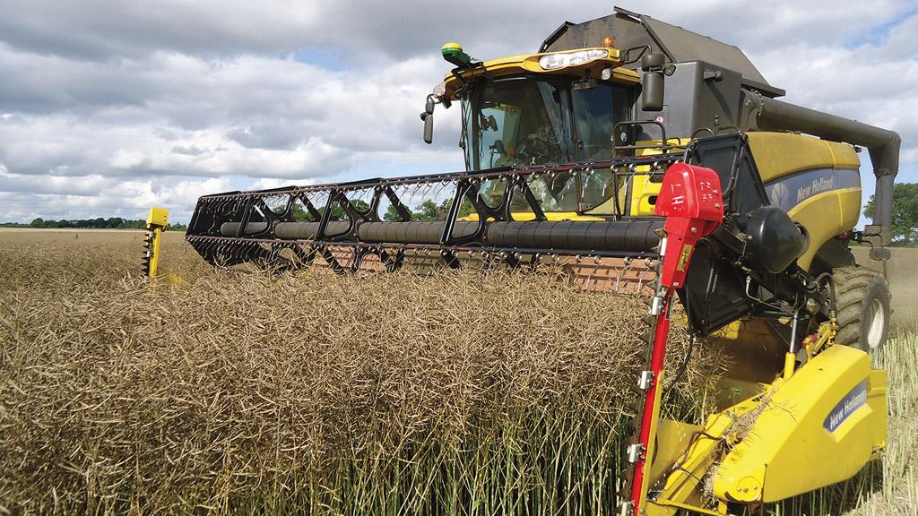 Clean and consistent crops raised hopes for the 2017 harvest.