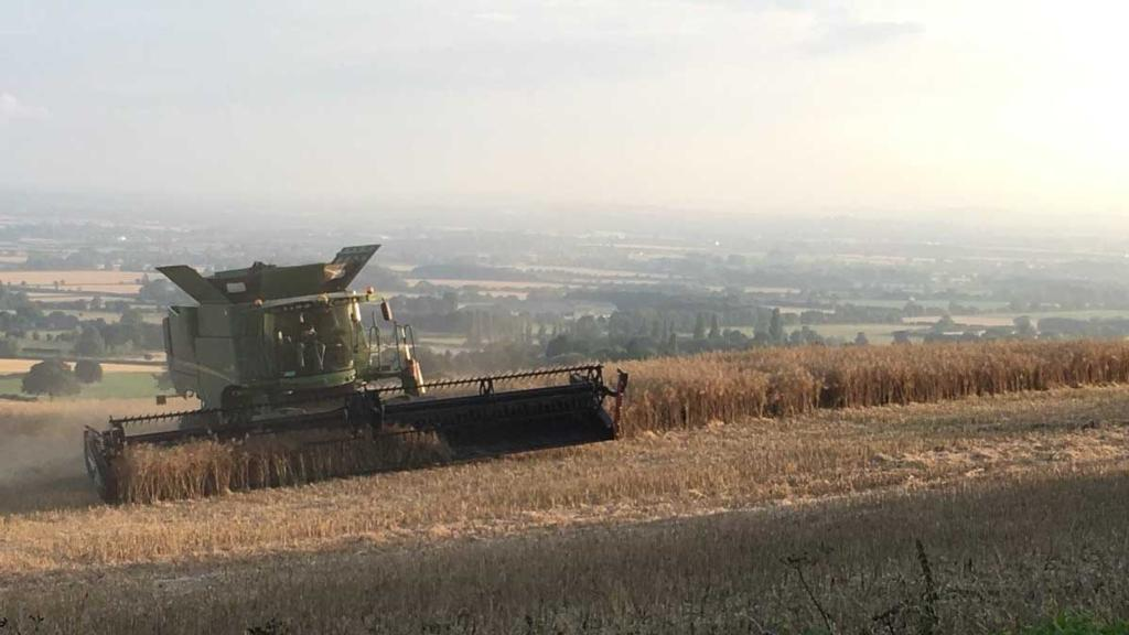 Harvest well underway at Overbury Farms - Jake Freestone