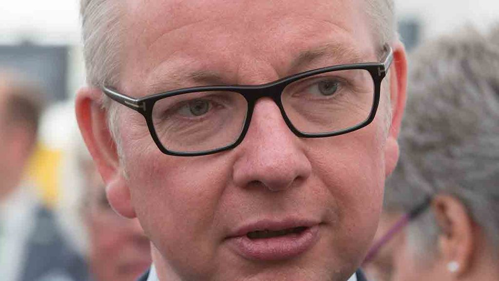 Michael Gove's green Brexit conference speech full of 'empty promises'
