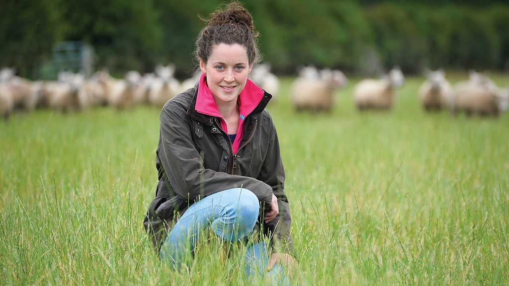 The young farmer who smashed the Charollais record