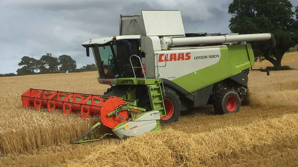 Winter barley averaging 3.2t/acre in Northumberland