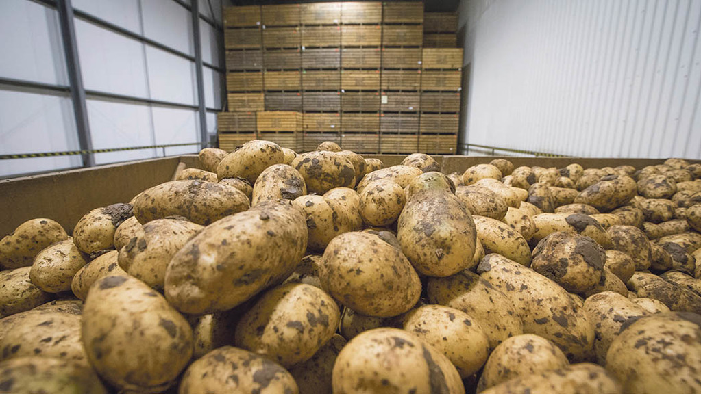 UK strikes seed potato deal with China