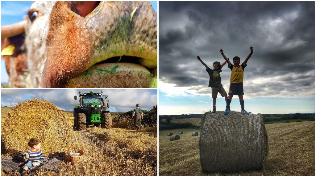 VIDEO: #Farm24 records tumble as thousands of farmers take to social media