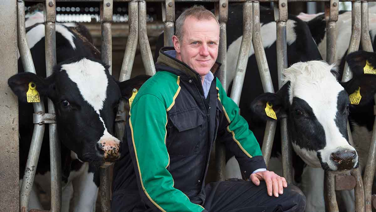 Profit from grass: Good weather boosts quality and growth