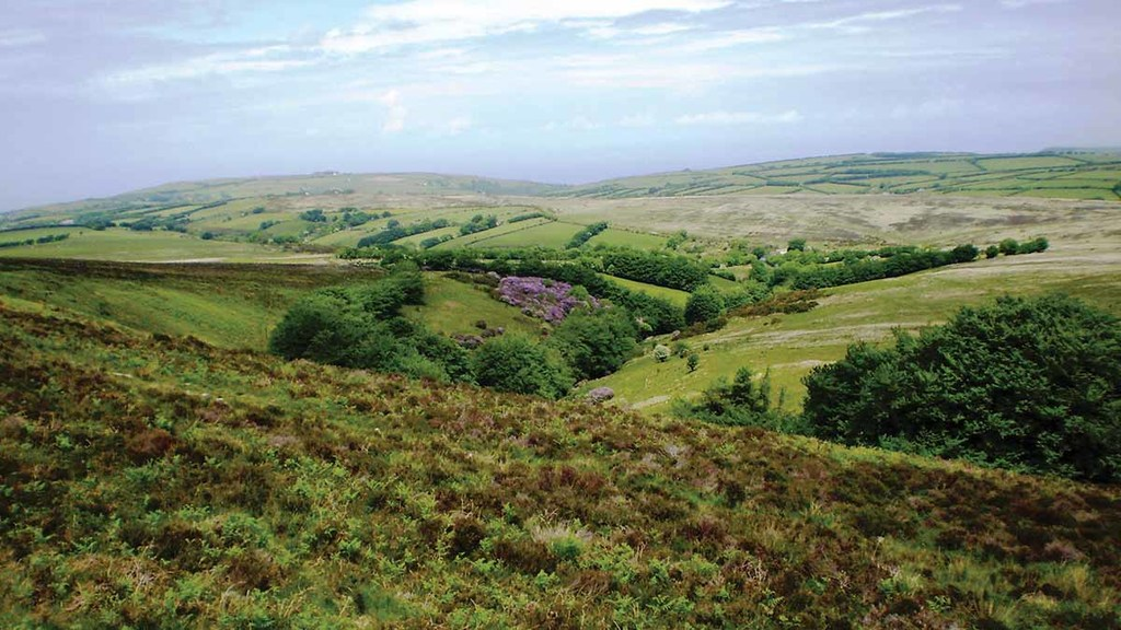 Agriculture showing 'positive signs' of future farming policy