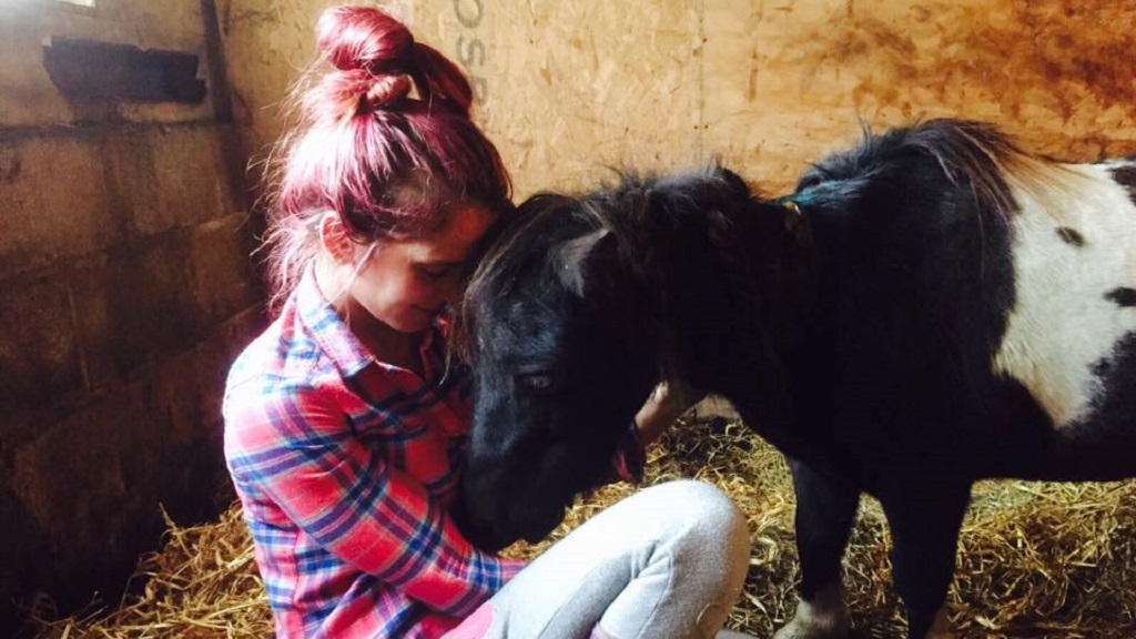 Young farmer left devastated after pony stabbed to death in 'deliberate attack'