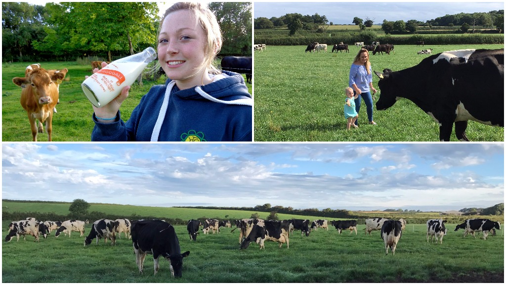 25 brilliant tweets as farmers show they are well and truly #ProudOfDairy