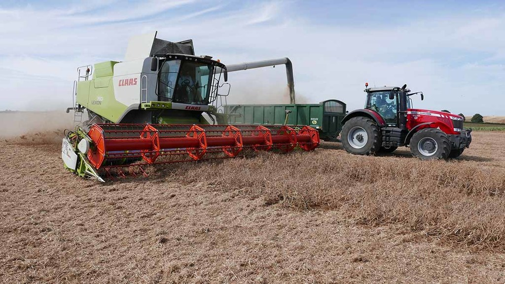 Lincolnshire grower sets combinable pea world yield record