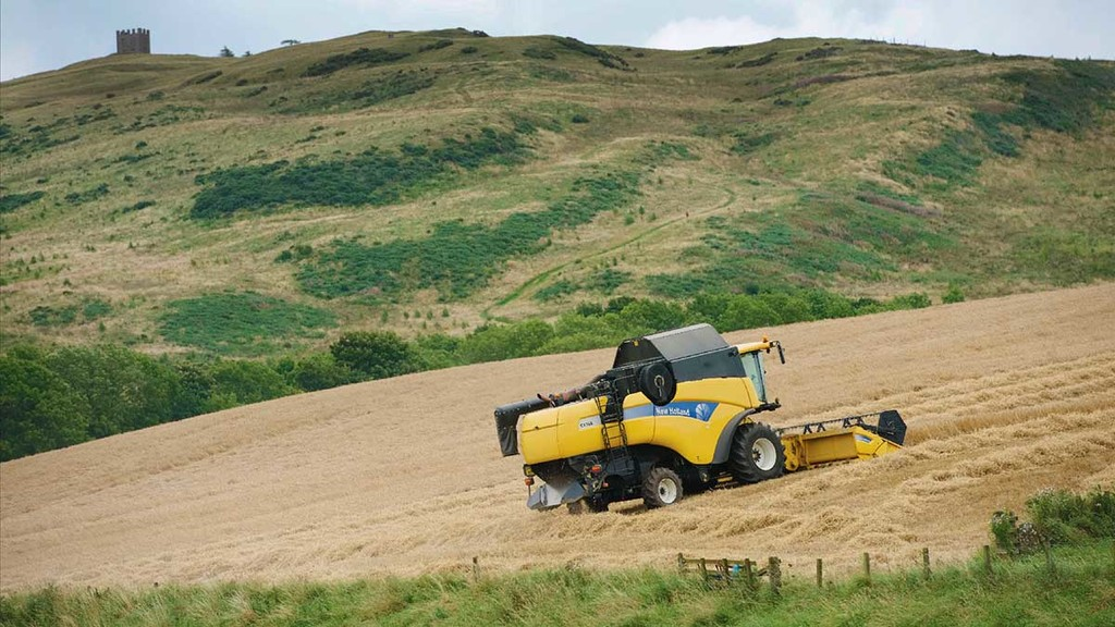 Late harvest means many Scottish crops labelled 'salvage jobs' only