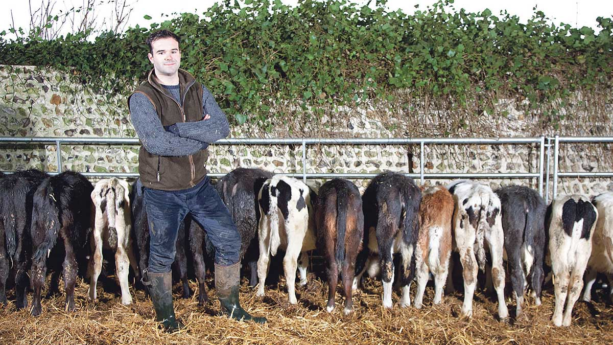 New business guide for young farmers aims to launch new businesses