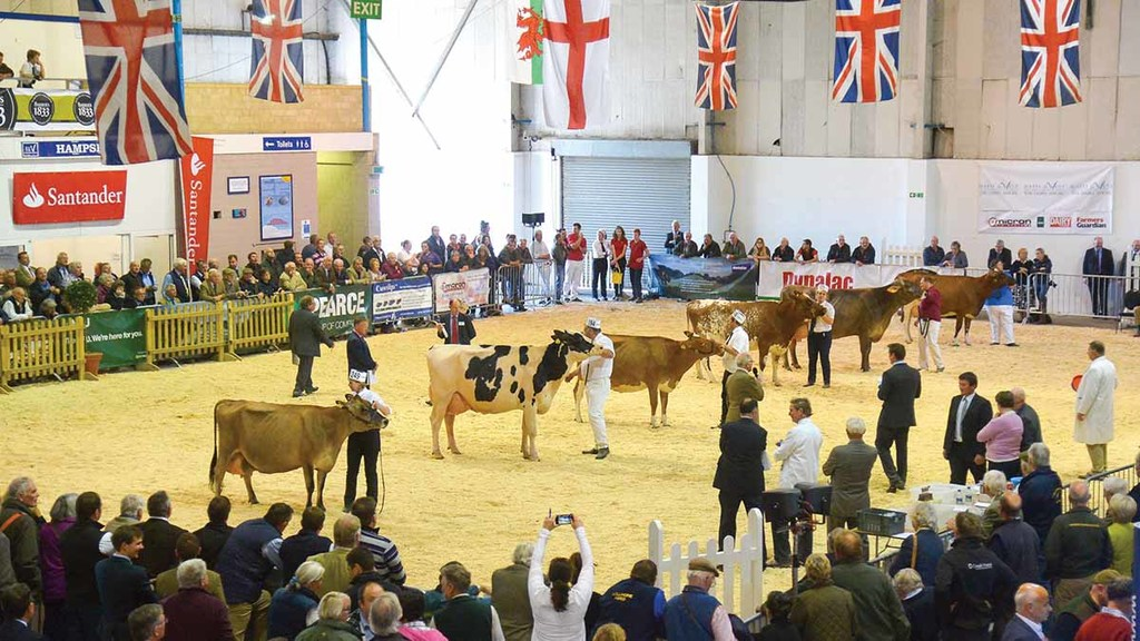 Show season round-up: 10 delightful dairies who have graced the summer show circuit