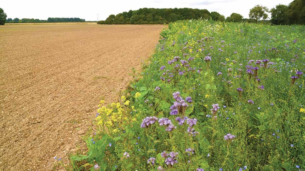 Farm facts: JSR Arable