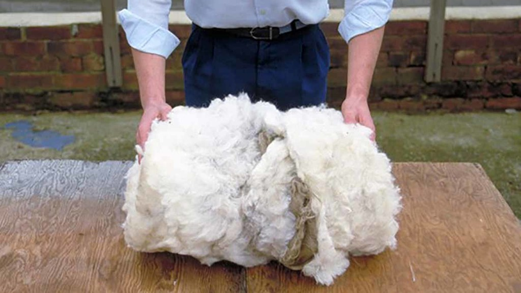 How to roll a fleece