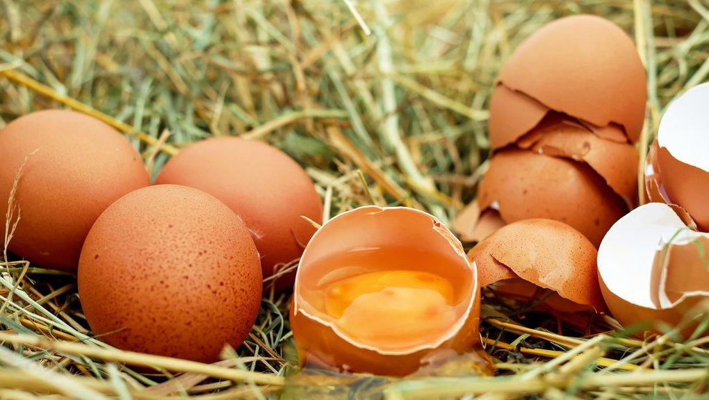 Chicken and eggs naturally enriched with omega-3 'can cut risk of major diseases'