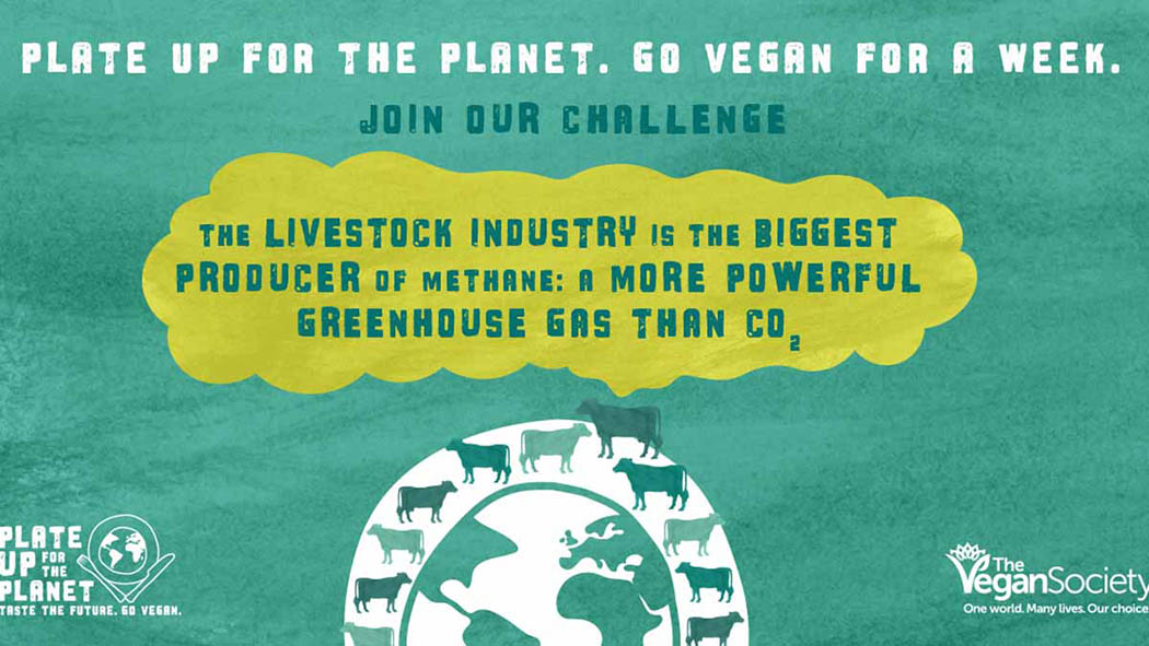 Politicians publicly shame livestock industry to promote vegan challenge
