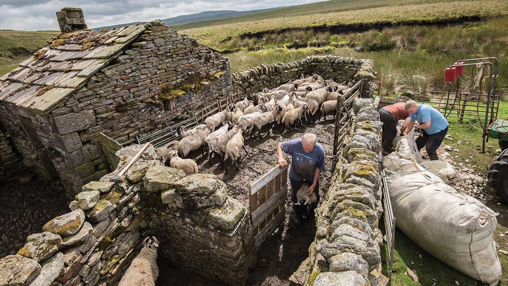 "Yorkshire Dales farmers star of the show in rural exhibition ""Voices From The Land"""