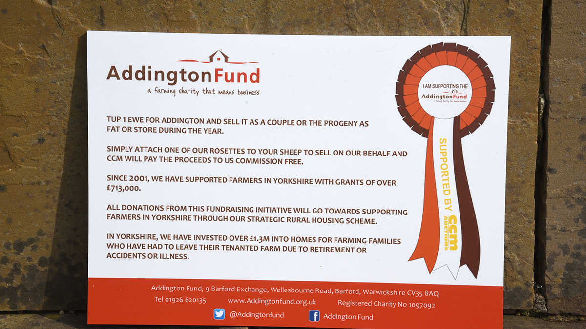 Boost for Addington fund's Tup 1 Ewe campaign