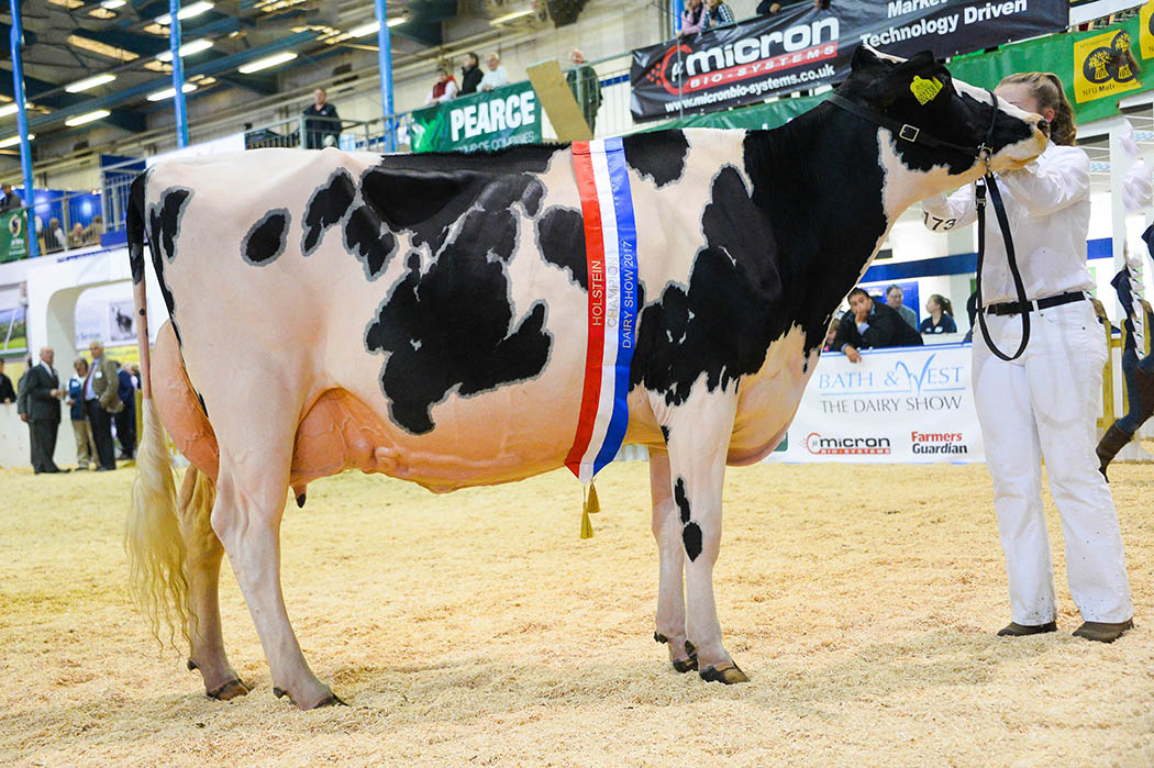 Holstein crowned supreme at Dairy Show