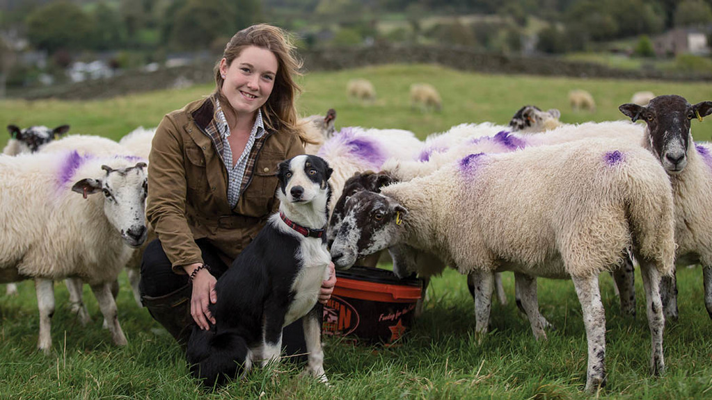 "Young farmer focus: Jodie Swan - ""All I ever wanted was my own flock of sheep"""