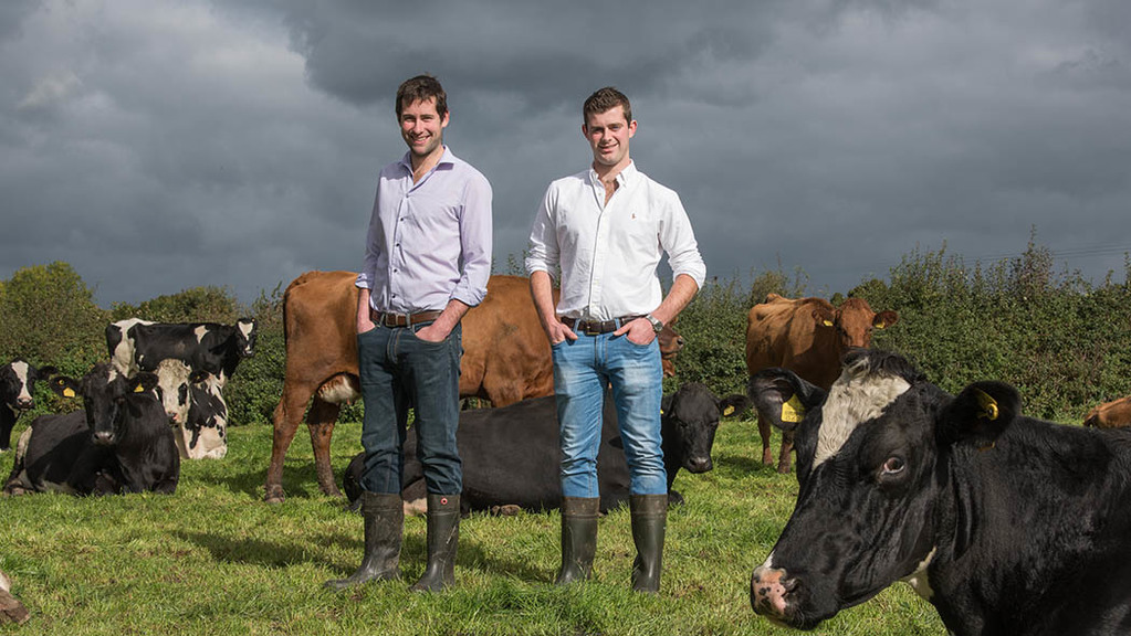 Young farming brothers launch Cheshire's first clotted cream