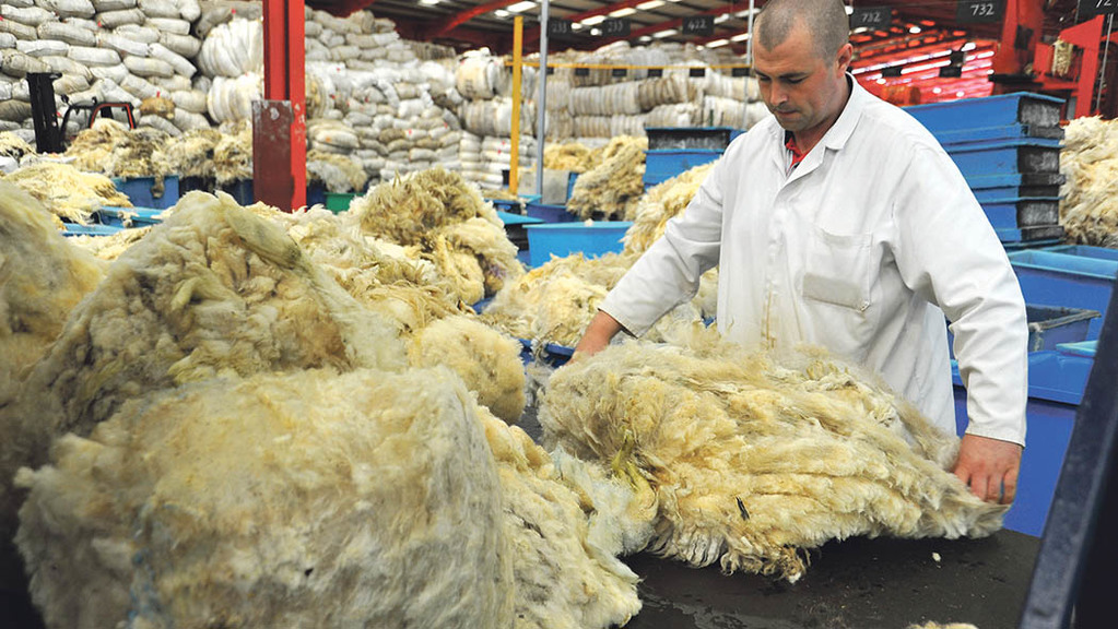 British Wool launches new entrant scheme