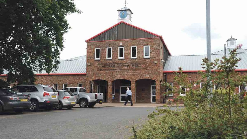 Hexham Mart ordered to pay £12,000 for livestock movement breaches