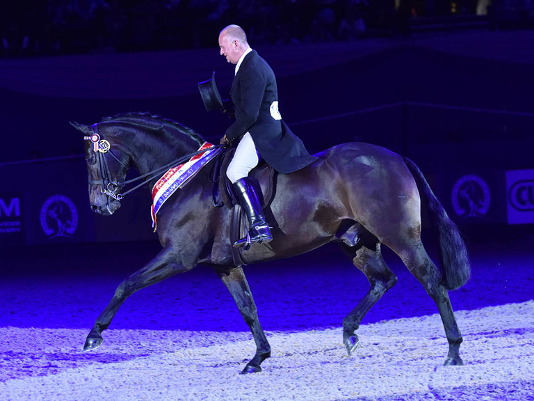 Diamonds Are Forever Shines at HOYS